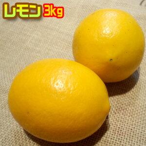国産レモン3kg 農薬不使用 化学肥料不使用 防腐剤ワックス不使用 わけあり 九州産 ※ 無農薬 表示について 「無農薬」「無化学肥料」の表示は国のガイドラインにおいて平成19年4