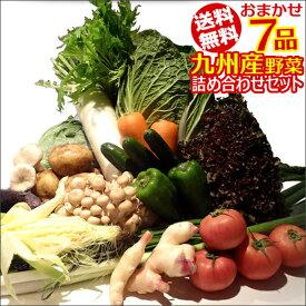 【7品+おまけ1品】おまかせ詰め合わせ九州野菜セット【送料無料】【RCP】