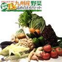 【13品+おまけ1品】おまかせ詰め合わせ九州野菜セット【送料無料】【SS10P03mar13】