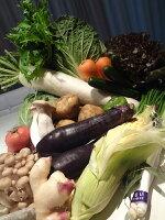 九州野菜の宅配通販15品セット