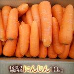 無農薬栽培人参10kg箱【規格外品】