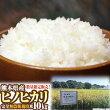 【無農薬米】白米【合鴨農法】【合鴨米】【地下水使用】【熊本県産】【ひのひかり】北海道、東北は別途追加送料
