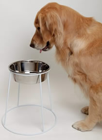 ホワイト食器スタンド<大型犬用>【あす楽対応】