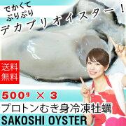 冷凍ガキ500×3