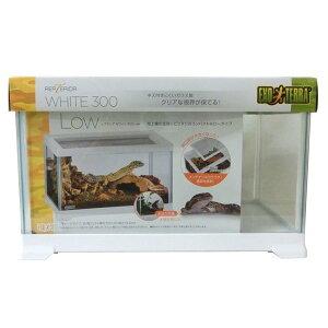 GEXレプテリアホワイト300Low