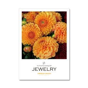 JEWELRY カーネリアンオレンジ|カタログギフト 結婚式 引出物 内祝い お返し ご挨拶 グルメ システム料込み 3冊で送料無料