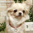 犬 ネックレス 【モニカ・ネックレス】Shake panoply シェイク公式