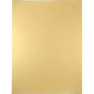 キングジム デラックス透明ポケット A2タテ 2・4穴 台紙あり 107D 1パック(10枚)