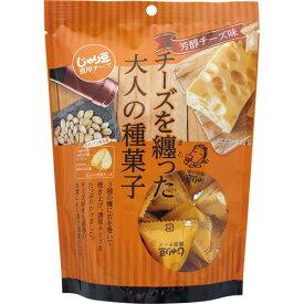 東海農産 じゃり豆濃厚チーズ 80g 1セット(3パック)