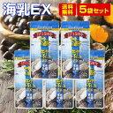 【牡蠣サプリ】販売実績15年突破!!1日2粒で必要な12mgの亜鉛が摂れる。栄養機能食品(亜鉛)「海乳EX」5袋セット【送料…