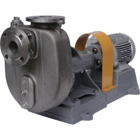 寺田 セルプラポンプ ステンレス製グランドパッキン式 60Hz(CO2)