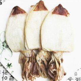 [冷凍]『海産類』一夜干し剣先するめ(ケンサキするめ)|ハンチ(5枚)■ベトナム産 干し物 干し食材マラソン ポイントアップ祭