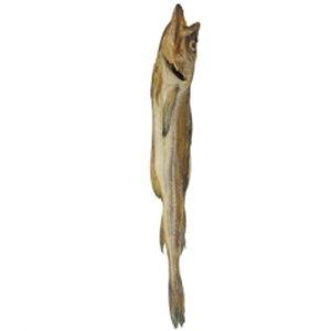 [冷凍]『食材』丸干しタラ|トンブコ(1尾)■ロシア産 棒たら 干し魚 干し物 韓国料理マラソン ポイントアップ祭