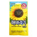 『LOTTE』チョコヘバラギ|ひまわり種チョコ(30g×1個)ロッテ チョコレット 韓国お菓子 韓国食品マラソン ポイントア…