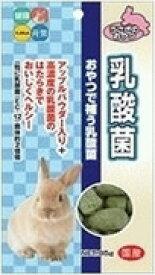 【ハイペット】乳酸菌