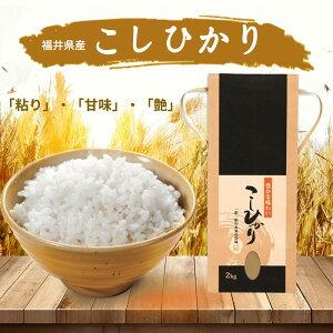 こしひかり 無農薬 福井県産 令和2年 2kgx4個セット ギフト プレゼント コシヒカリ 特選 8kg