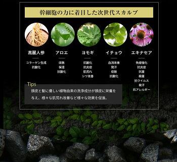 AGA幹細胞培養液配合ブラックスカルプシャンプー【450ml】