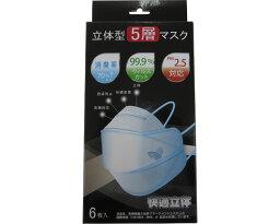 口罩立體型5層口罩WHO-95 6張裝光華立體口罩感冒花粉PM2.5對策護理用品