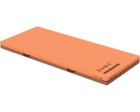 エバーフィットC3 清拭タイプ 91cm幅 KE-611SQ レギュラー パラマウントベッドマットレス 介護 エバーフィットマットレス 寝具 体圧分散マットレス リバーシブル 介護用品