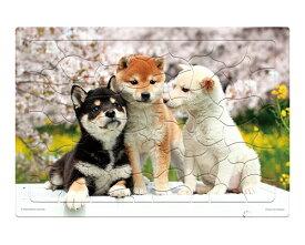 ジグソーパズル ▲いきいきパズル なかよしフレンズ(柴犬) 101-121 60ピース やのまんレクリエーション デイサービス 施設 人気 パズル リハビリ トレーニング 敬老の日