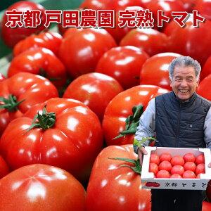 京都産 戸田農園の完熟トマト