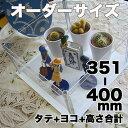アクリルコレクションケース246組立式【オーダーサイズ】タテヨコ高さ合計351から400mm以内 納期14日前後