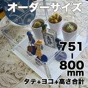 アクリルコレクションケース246組立式【オーダーサイズ】タテヨコ高さ合計751から800mm以内 納期14日前後