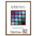 ポスターフレーム CT211カラーコレクションパネル B2 サイズ 728x515mm 額縁 ポスターフレーム