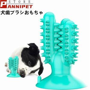 犬 歯ブラシ 噛む おもちゃ ゴム製 歯垢 歯石 口臭対策 吸盤式 サボテン 口腔ケア ストレス解消