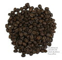 お買い得セール!(12/14まで)【スペシャルティコーヒー豆】ニカラグア・ラコパ・カサブランカ200g