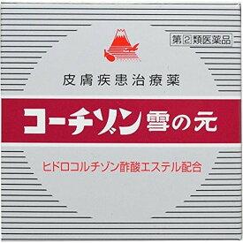 【第(2)類医薬品】雪の元コーチゾン 15g 定形外郵便 tk10