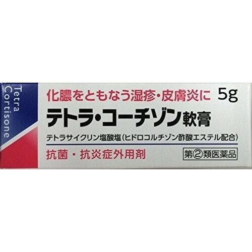 【第(2)類医薬品】テトラ・コーチゾン軟膏 5g 定形外郵便 tk10