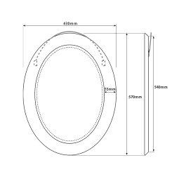 【送料無料】【有田焼】伊万里焼染錦金彩桜絵(楕円)ART2-GL003(H570×W430)ミラー磁器