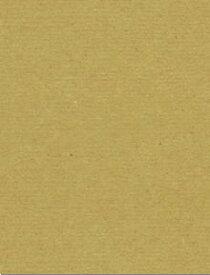 サンプル用 黄ボール紙 500g/m2 A4 1枚ボール紙 板紙 工作用紙