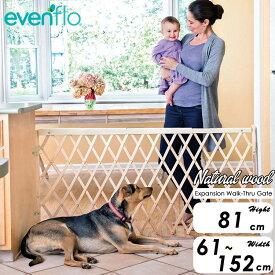 ペットゲート イーブンフロー 81cm ナチュラルウッド ウォークスルー ゲート 中型犬 大型犬 evenflo