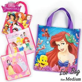 DM便対応/ 不織布バッグ ハンドバッグ M プリンセス ディズニー キャラクター 手提げ袋 作品収納バッグ マチ付き エコバッグ トートバッグ