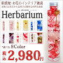 ハーバリウム植物の標本人気可愛い綺麗プリザーブドフラワードライフラワーインテリア雑貨玄関飾り