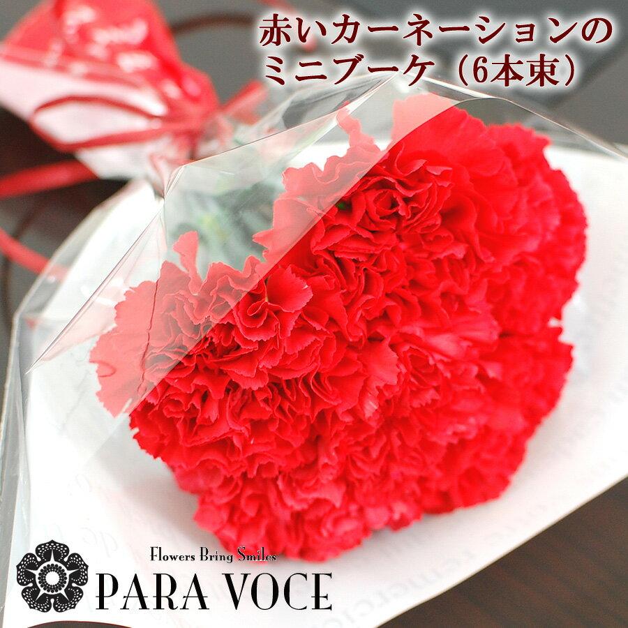 【遅れてごめんね 母の日 花 ギフト】赤いカーネーションのミニブーケ 6本の花束【カーネーション 母の日ギフト 生花 定番花束 プレゼント 花束 花ギフト おしゃれ】