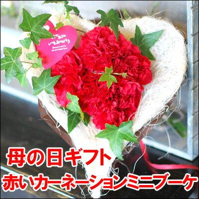 【母の日 花 ギフト】赤いカーネーションのミニブーケ【母の日ギフト 生花 定番花束 母の日 花束 】