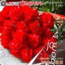 母の日 カーネーション 20本 花束 花 赤いカーネーション 極上カーネーション 感動の花束 プレゼント 花ギフト おしゃ…