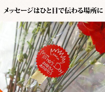 母の日花束カーネーション20本花赤いカーネーション極上カーネーション感動の花束プレゼント花ギフトおしゃれお母さんギフト母の日プレゼント母義母女性フラワーギフトメッセージカード付生花【RCP】