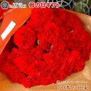 母の日 カーネーション 花 50本の花束 ギフト 花束 赤 極上 赤いカーネーション 大輪 花ギフト プレゼント おしゃれ …