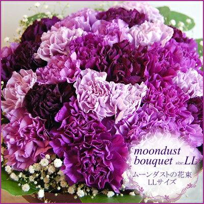 【母の日 花束】 ムーンダストの花束(LL 48本)母の日ギフト専用【花瓶が要らない花束 母の日 プレゼント 青 紫 カーネーション 花 ギフト 生花 スタンディングブーケ スイーツ セットも】