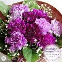 花 誕生日 古稀 喜寿 卒寿 等のお祝いに カーネーション ムーンダストの花束(S 12本) 【花瓶が要らない花束 プレゼン…