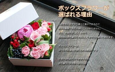 【花ギフト】ボックスフラワーSサイズ【誕生日プレゼント花アレンジフラワーケーキフラワーボックス誕生日プレゼント女性生花】
