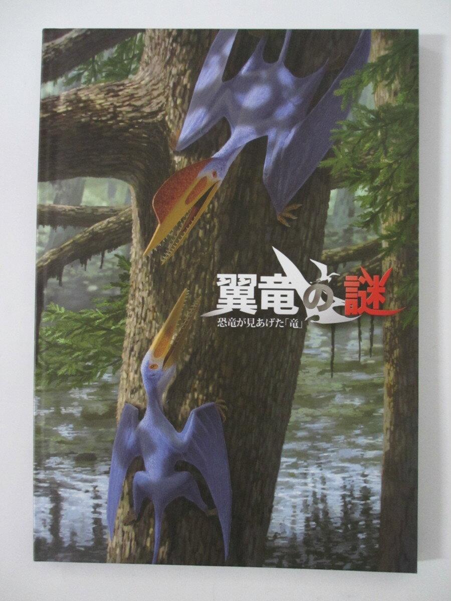 【中古パンフレット】翼竜の謎-恐竜が見上げた「竜」 福井県立恐竜博物館