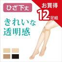 【送料無料】12足組 美しい 透明感 ひざ下丈 ストッキング