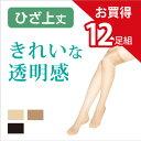 【送料無料】12足組 美しい 透明感 ひざ上丈 ストッキング