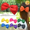 Rainbow Ribbon 2way brooch (women's fashion women's accessories gadgets fashion cute 20s 30s accessories accessory favors presents birthday Hara-Juku series kids Ribbon Ribon paris kids his cute girl fest event live party accessory) P06Dec14