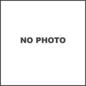 【○在庫あり→2月26日出荷】アライ スーパーアドシスIシールド/スモーク A1102